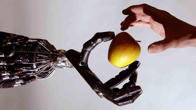 Социальная робототехника